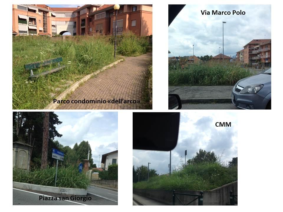 20140820_vegetazione a piossasco
